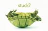 Stuck Turtle